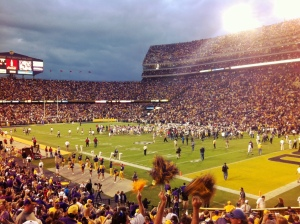 LSU Defeats Arkansas 41-17